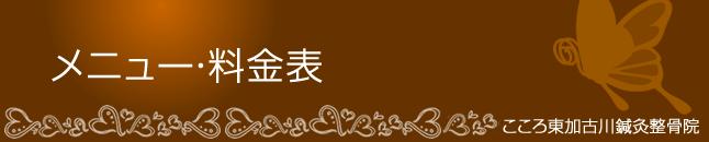 堺筋本町こころ東加古川鍼灸整骨院料金表